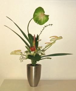 Ikebana--Rikka Shofutai Style